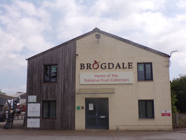 brodgale-collections